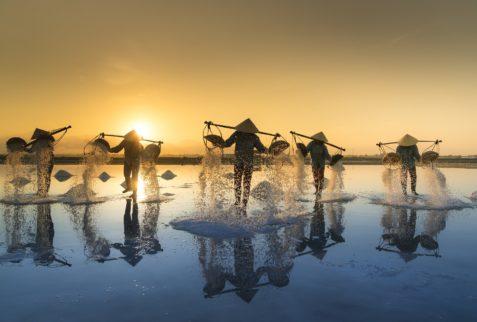 Récolte de sel, Vietnam