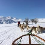 Saint Sorlin traineau a chiens